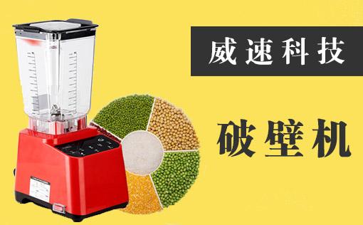 广东威速科技发展公司网站策划